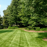 Things to Consider When Choosing a Landscape Designer